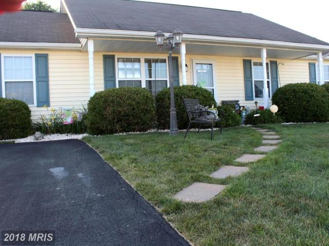 382 Dinali Drive, Martinsburg, WV 25403 (#BE10298102) :: Keller Williams Pat Hiban Real Estate Group