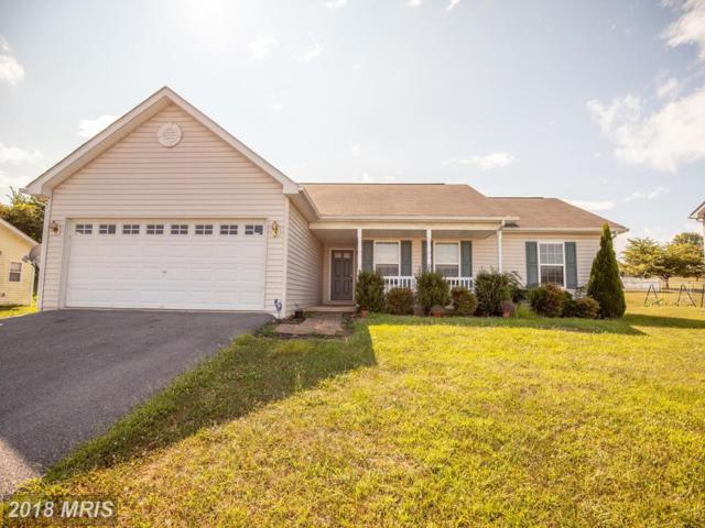 334 Dinali Drive, Martinsburg, WV 25403 (#BE10301955) :: Pearson Smith Realty