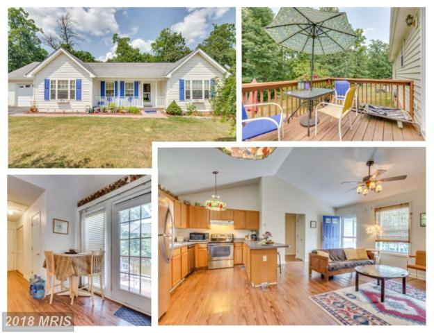 95 Scarlet Oak Drive, Martinsburg, WV 25405 (#BE10302147) :: Pearson Smith Realty