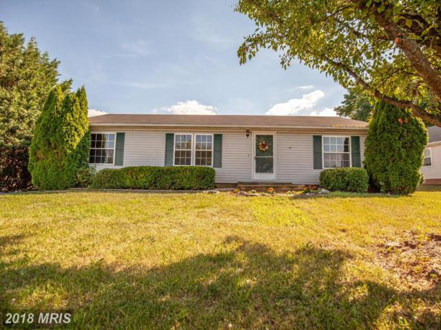 33 Savannah Sparrow Lane, Martinsburg, WV 25405 (#BE10305297) :: Hill Crest Realty