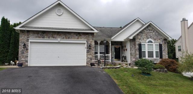 467 Hogan Drive, Martinsburg, WV 25401 (#BE10320595) :: Bob Lucido Team of Keller Williams Integrity