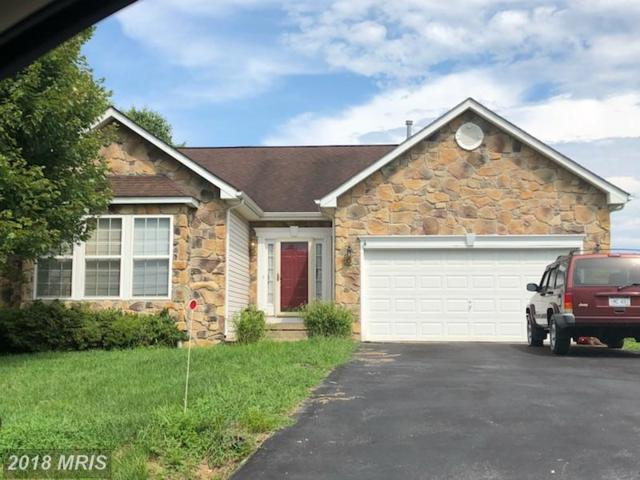 141 Caledonia Drive, Martinsburg, WV 25405 (#BE10320713) :: Bob Lucido Team of Keller Williams Integrity