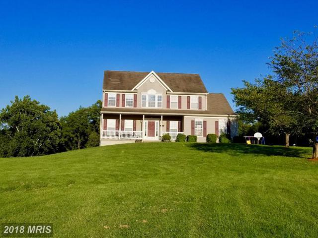 126 Elsie Drive, Kearneysville, WV 25430 (#BE10329346) :: Pearson Smith Realty