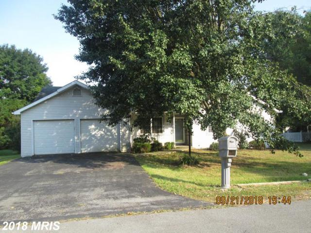 153 Dartmouth Lane, Falling Waters, WV 25419 (#BE10353129) :: Hill Crest Realty