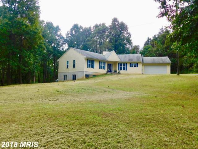 238 Slim Lane, Falling Waters, WV 25419 (#BE10353389) :: Pearson Smith Realty
