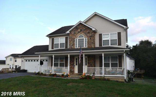 499 Dinali Drive, Martinsburg, WV 25403 (#BE10353670) :: Pearson Smith Realty