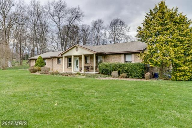 159 Crystal Brook Lane, Martinsburg, WV 25403 (#BE9902102) :: LoCoMusings