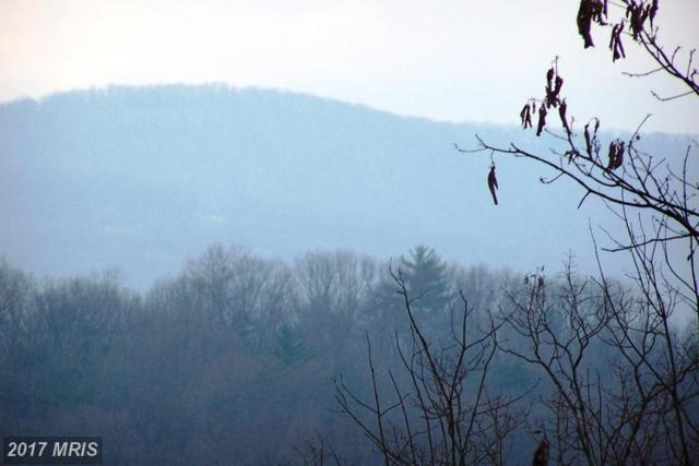 Secluded Drive, Hedgesville, WV 25427 (#BE9905720) :: Pearson Smith Realty