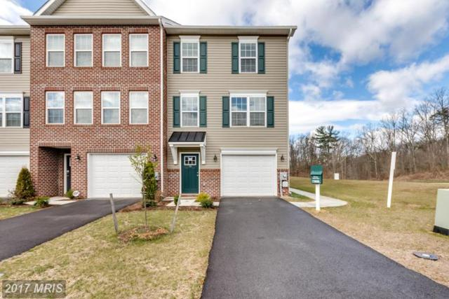 18 Savage Court, Falling Waters, WV 25419 (#BE9923003) :: LoCoMusings