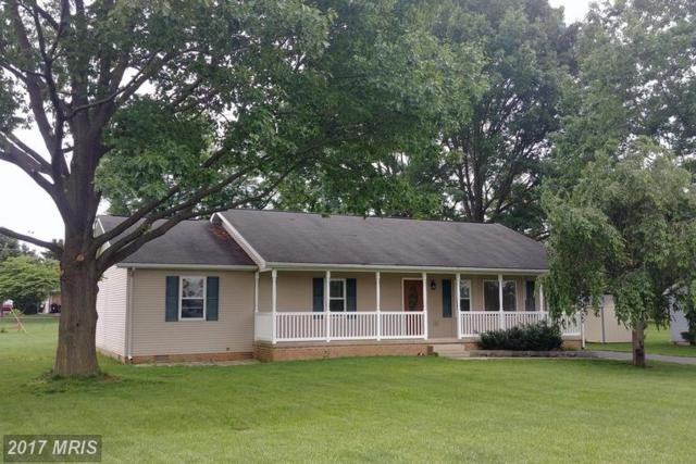 164 Friendship Drive, Martinsburg, WV 25405 (#BE9961679) :: LoCoMusings