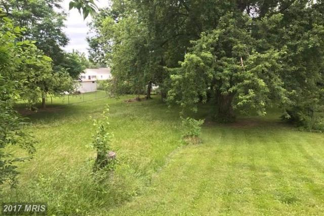 Woodbury Avenue, Martinsburg, WV 25404 (#BE9967994) :: Pearson Smith Realty