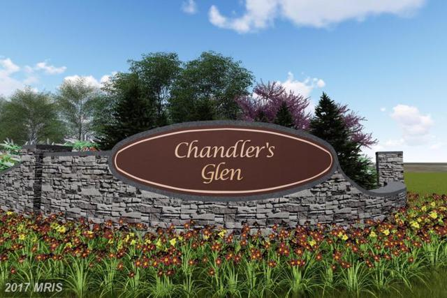 Chandlers Glenn Drive Drive W, Bunker Hill, WV 25413 (#BE9971325) :: Hill Crest Realty
