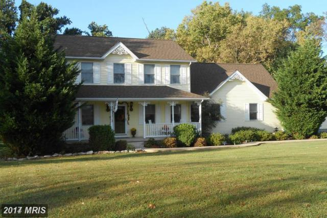 57 Cahill Court, Inwood, WV 25428 (#BE9988321) :: Pearson Smith Realty