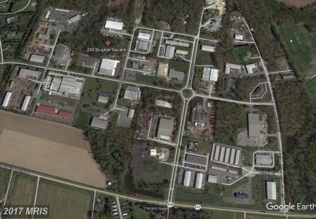 230 Bugeye Square, Prince Frederick, MD 20678 (#CA10015481) :: Arlington Realty, Inc.