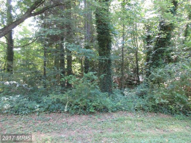 335 Gray Drive, Lusby, MD 20657 (#CA10016719) :: Pearson Smith Realty