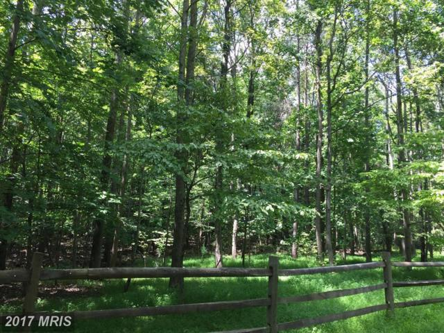 67 Chapel View Court, Lusby, MD 20657 (#CA10024022) :: Pearson Smith Realty