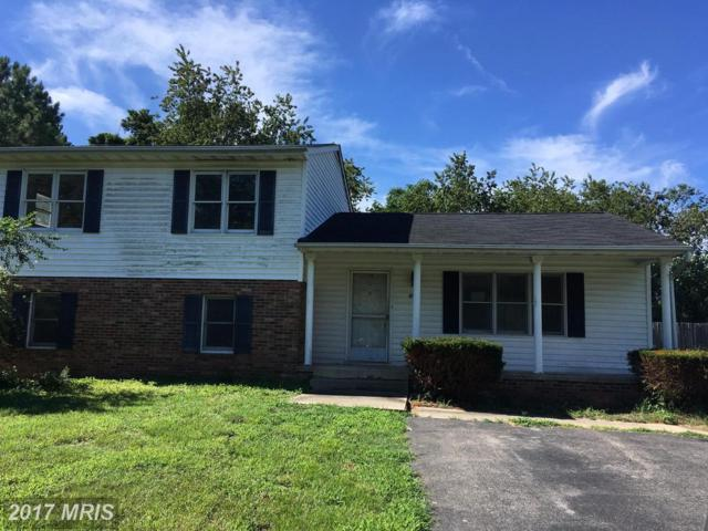 415 Seagull Lane, Lusby, MD 20657 (#CA10041863) :: Pearson Smith Realty