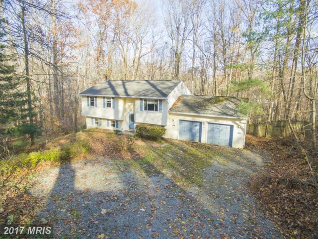 8961 Limerick Lane, Owings, MD 20736 (#CA10047808) :: Pearson Smith Realty