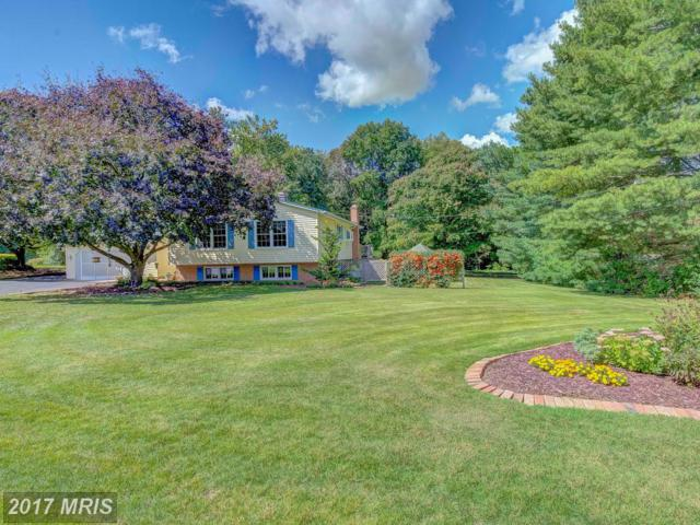 11204 Maplewood Drive, Dunkirk, MD 20754 (#CA10048543) :: Pearson Smith Realty