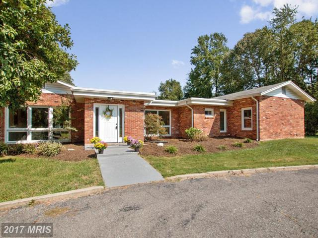 11903 Crown Drive, Dunkirk, MD 20754 (#CA10049789) :: Pearson Smith Realty