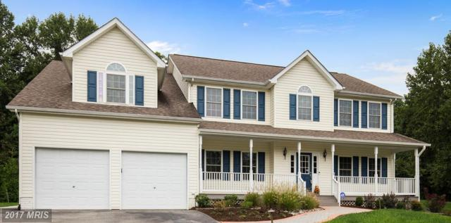9254 Blue Sky Court, Owings, MD 20736 (#CA10051244) :: Pearson Smith Realty
