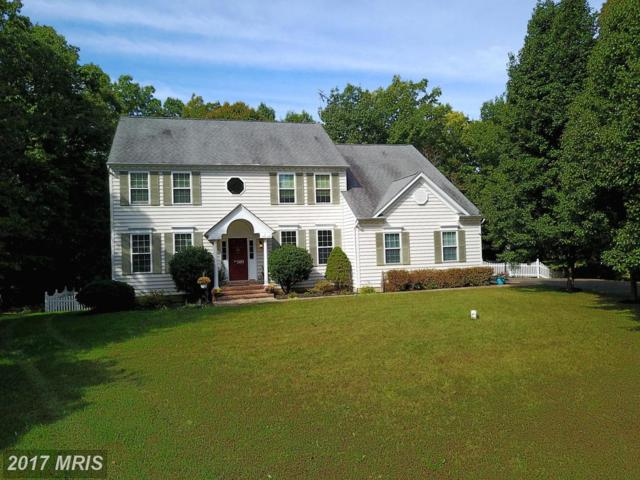 2451 Abigail Court, Prince Frederick, MD 20678 (#CA10076478) :: Pearson Smith Realty