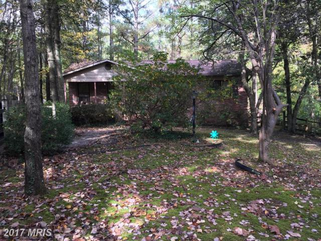 296 Elkins Lane, Lusby, MD 20657 (#CA10101184) :: Pearson Smith Realty