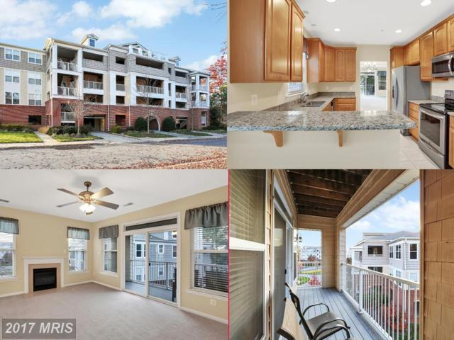 13824 Reef Way #301, Dowell, MD 20629 (#CA10115080) :: Pearson Smith Realty
