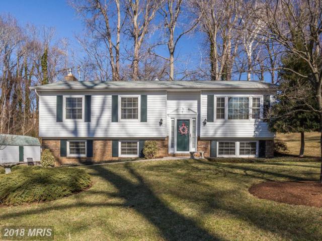5426 Chesapeake Avenue, Saint Leonard, MD 20685 (#CA10151203) :: The Maryland Group of Long & Foster