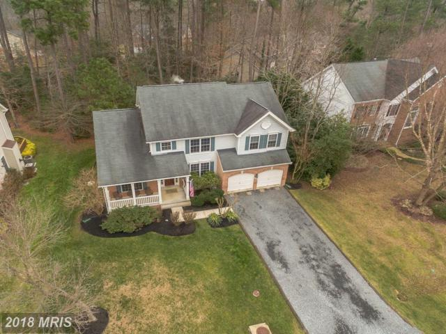 13448 Lore Pines Lane, Solomons, MD 20688 (#CA10170799) :: Bob Lucido Team of Keller Williams Integrity