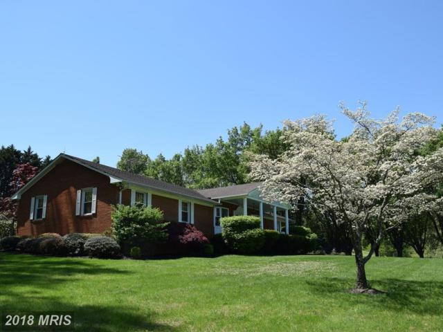 10941 Lakeside Drive, Dunkirk, MD 20754 (#CA10244186) :: Gail Nyman Group