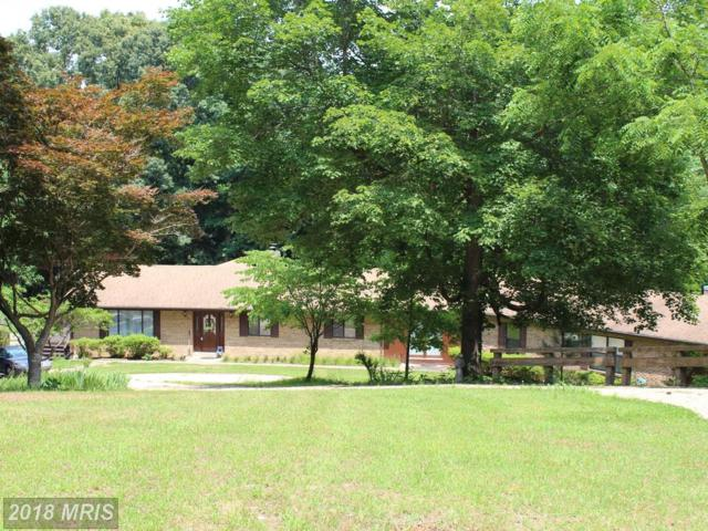 2710 Sassafras Ct, Owings, MD 20736 (#CA10276578) :: Charis Realty Group