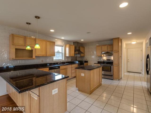 97 Swaggers Point Road, Solomons, MD 20688 (#CA10349166) :: Keller Williams Preferred Properties