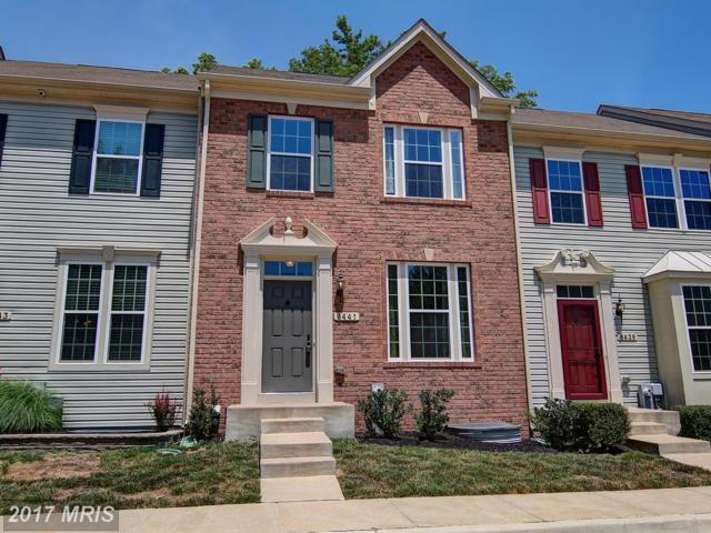 8441 Clear Spring Drive, Chesapeake Beach, MD 20732 (#CA9984052) :: Pearson Smith Realty