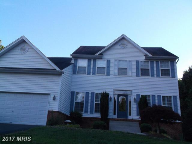 9930 Lucky Lure Lane, Owings, MD 20736 (#CA9989952) :: Pearson Smith Realty