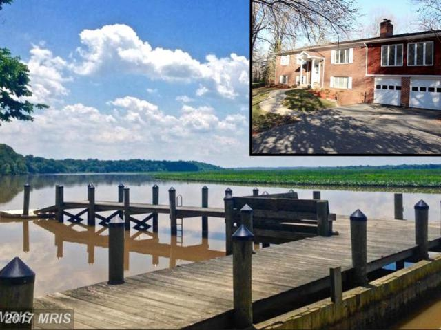 12049 Palisades Drive, Dunkirk, MD 20754 (#CA9990143) :: Pearson Smith Realty