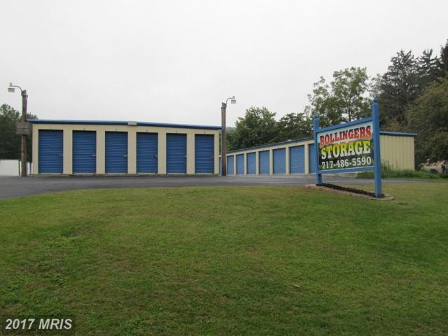 1328 Pine Road, Carlisle, PA 17015 (#CB10058413) :: LoCoMusings