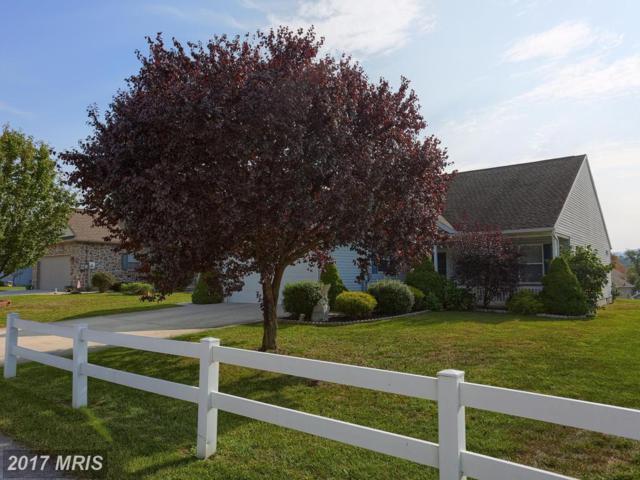 29 Lantern Lane, Shippensburg, PA 17257 (#CB10065778) :: Keller Williams Pat Hiban Real Estate Group