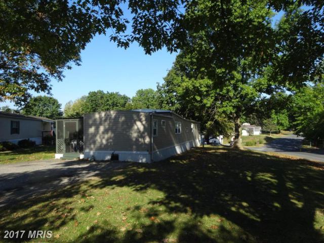 65 Shippensburg Mobile Estate, Shippensburg, PA 17257 (#CB10072336) :: LoCoMusings