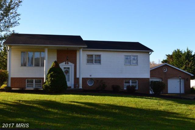 13 Roger Avenue, Shippensburg, PA 17257 (#CB10085397) :: Pearson Smith Realty
