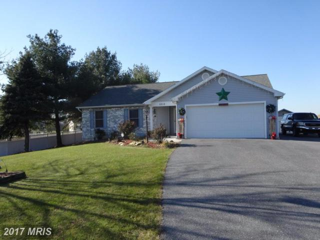 1210 Newburg Road, Shippensburg, PA 17257 (#CB10112179) :: Pearson Smith Realty