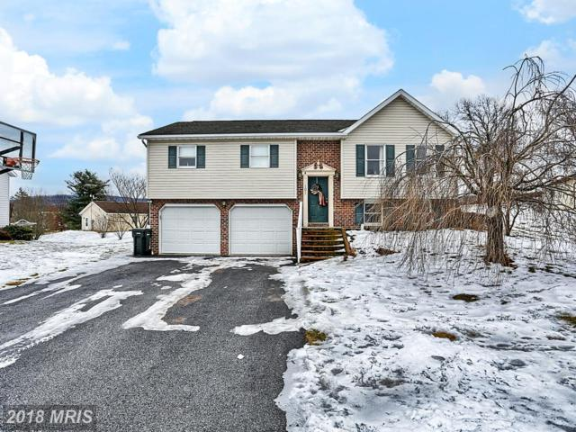 101 Independence Drive, Shippensburg, PA 17257 (#CB10154924) :: The Gus Anthony Team