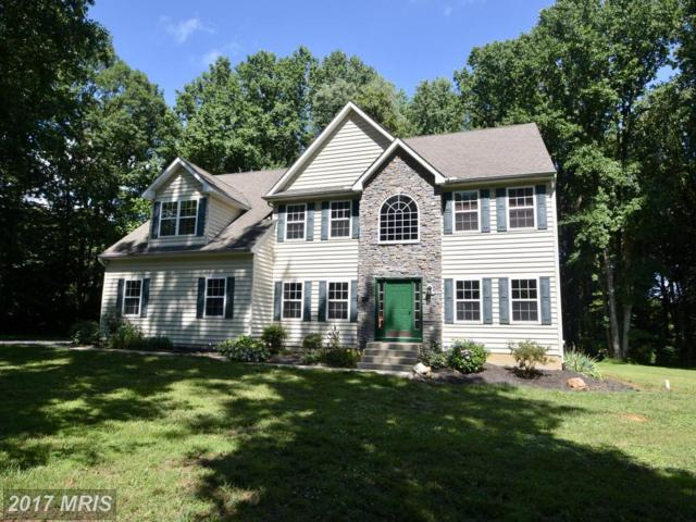 12 Canterbury Court, Colora, MD 21917 (#CC10011643) :: ExecuHome Realty