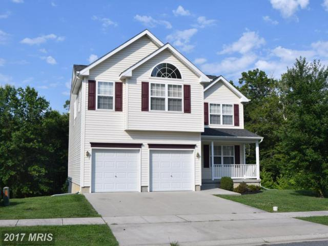 99 Shannon Drive, Elkton, MD 21921 (#CC10012712) :: ExecuHome Realty