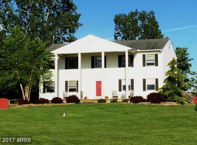 800 Glebe Road, Earleville, MD 21919 (#CC10012807) :: ExecuHome Realty