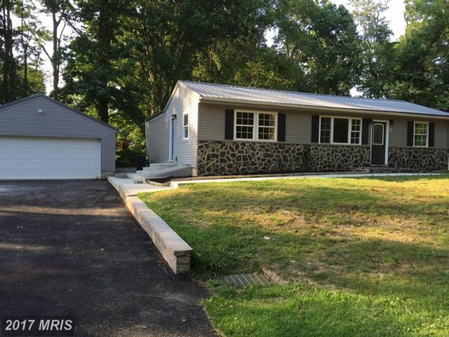 291 Dogwood Road, Elkton, MD 21921 (#CC10012868) :: ExecuHome Realty
