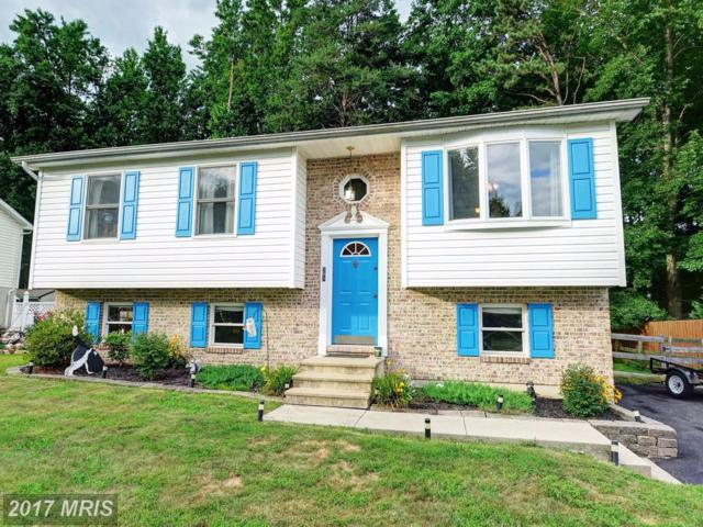 28 Burrwood Court, North East, MD 21901 (#CC10016113) :: Pearson Smith Realty