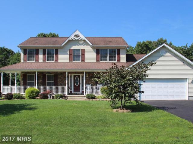 139 Whitaker Avenue, North East, MD 21901 (#CC10029332) :: Pearson Smith Realty