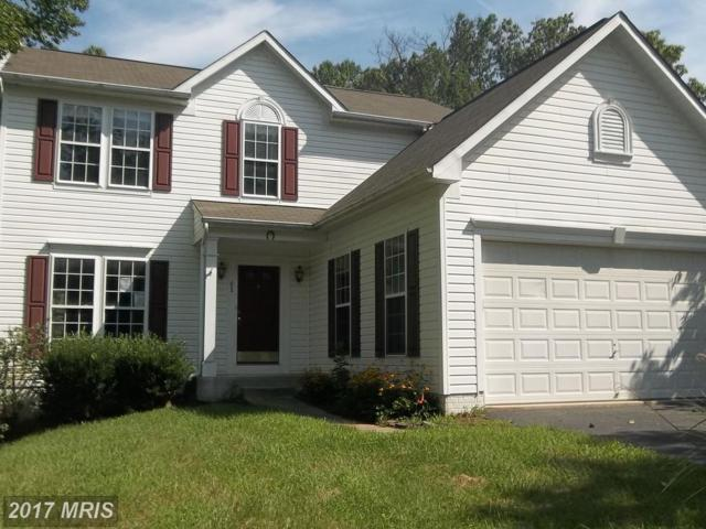 81 Forge Court, North East, MD 21901 (#CC10029431) :: Pearson Smith Realty