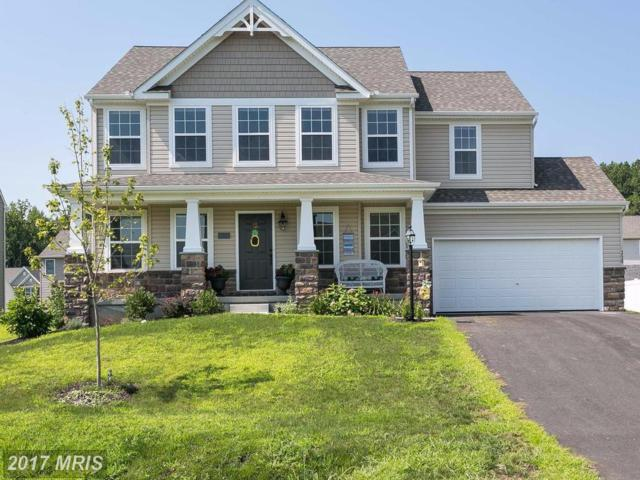 350 Wilma Court, North East, MD 21901 (#CC10035912) :: Pearson Smith Realty